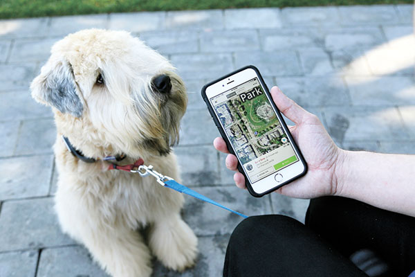 "WHISTLE. As shown by this Whistle pet tracker follows pet dogs, technology isn't just for humans, it's also for their furry friends. In Silicon Valley and beyond, a growing number of ""pet-tech"" startups are selling devices to keep pets safe, healthy, entertained and connected when their owners are away. (AP PHOTO)"