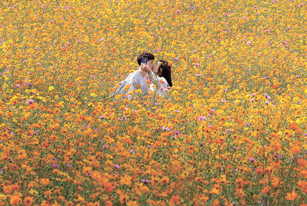 THE FEELS. A couple kisses while they take pictures in the middle of a cosmos field at Olympic Park in Seoul, South Korea. For now it's hard to ascertain what emotions these two individuals are experiencing, but new technology offers the possibility that portable wireless devices might detect what a person really feels in the heat of the moment. (AP PHOTO)