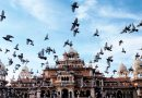 Postcards From India: Jaipur