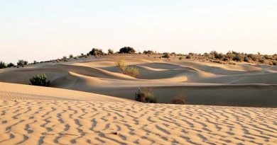 Postcards From India: Jaisalmer