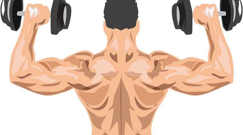 What's your fitness regimen?